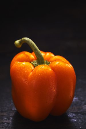 Fresh whole orange sweet pepper with copy space over a dark background and a long green stalk viewed side on glistening with water drops Stock fotó