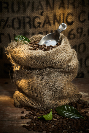 Rustic hessian sack filled with roasted coffee beans with a metal scoop and background organic text on burlap Stock fotó