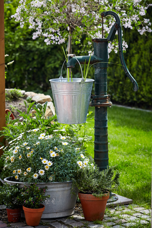 Old cast iron water pump and metal pail in a lush green garden with white daisies and potted plants in a garden landscaping concept 版權商用圖片