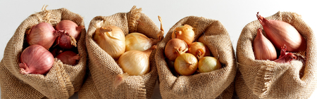 Set of various onion harvest sorted in burlap sack bags and arranged in a row, viewed in close-up on white background