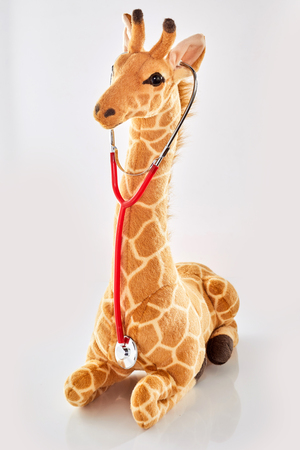 Studio shot close-up of a cute giraffe stuffed toy listening to a red stethoscope as symbol for healthcare for children against white background for copy space