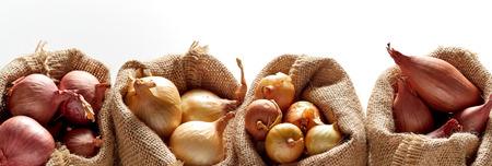 Reihe von Säcken mit verschiedenen Zwiebelsorten, sortiert in verschiedene Tüten, vor weißem Hintergrund platziert