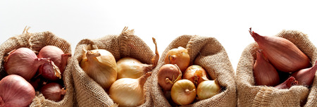 Row of sacks with different kinds of onion, sorted in different bags, placed against white background Stockfoto