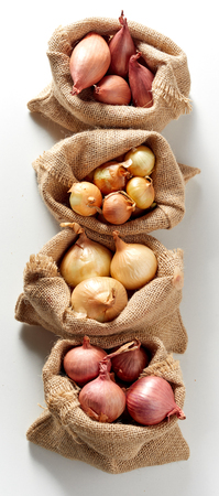 Vertically arranged row of burlap sack bags with different kind of fresh red and yellow onion, viewed from above on white background