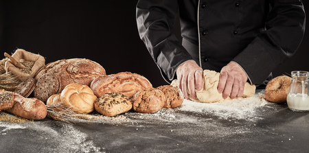 Baker kneading fresh dough for baking bread alongside a large display of speciality bread and rolls on a floury kitchen counter, panorama banner
