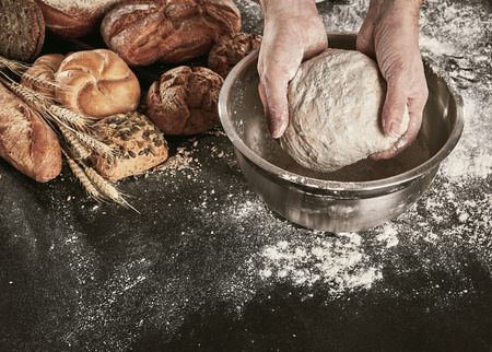 Hands of a baker kneading dough in a metal mixing bowl on a flour covered counter with an assortment of speciality breads alongside Imagens