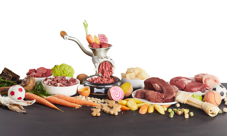 Panorama banner of healthy ingredients for barf food for domestic pets with assorted raw offal Stock Photo