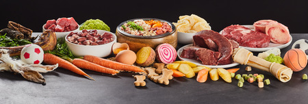 Panoramabanner mit verschiedenen frischen Lebensmitteln zur Zubereitung von gesundem Rohbarf für Katzen und Hunde mit Gemüse Standard-Bild