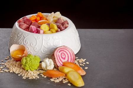 Organic meal for pets mixed in white bowl for cat or dog Reklamní fotografie
