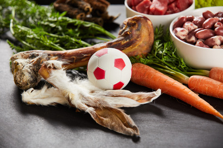 Rabbits ears, fresh bone and ball for a dog arranged on a table with fresh vegetables and meat for a healthy diet Imagens