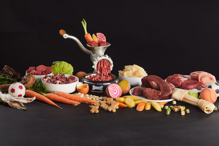 Colorful still life of fresh raw food for barf dog feed with assorted vegetables, heart, stomach, lungs, organs, offal , uncooked oats, bone and toys on black Stock Photo
