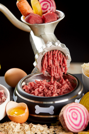 Mincing a selection of raw meat for barf pet food with offal, heart, beef, poultry and stomach mixed with fresh vegetables and egg yolk for a healthy diet