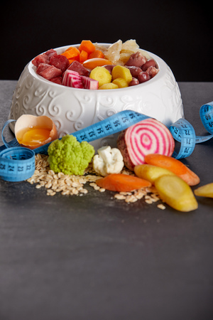 BARF healthy food for dogs with measuring tape and copy space. Reklamní fotografie