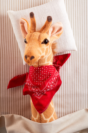 Cute sick toy giraffe with bright red bandanna tied around its neck lying sick in bed in a close up view in a concept of paediatric medicine for kids Banco de Imagens - 121548099