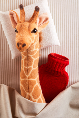 Little plush toy giraffe running a fever lying cuddled up sick in bed with a bright red hot water bottle to keep it warm in a concept of paediatric medicine for kids 스톡 콘텐츠