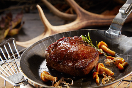 Grilled marinated thick lean wild deer venison steak with autumn mushrooms served in a skillet with background of a shed antler