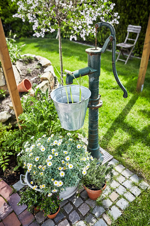 Lush spring garden with ornamental vintage water pump and galvanised tub of white daisies below a hanging bucket with golden sunshine Imagens