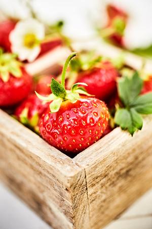 Fresh juicy organic strawberries in wooden box viewed in closeup with selective focus