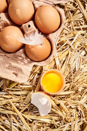 Healthy organic free range hens egg broken open to reveal the bright yellow yolk alongside a carton of brown eggs on a bed of clean straw