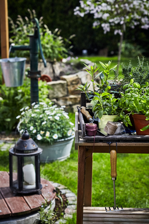 Spring garden scene with lantern and potted herbs on a rustic table alongside a vintage water pump with daisies and flowers