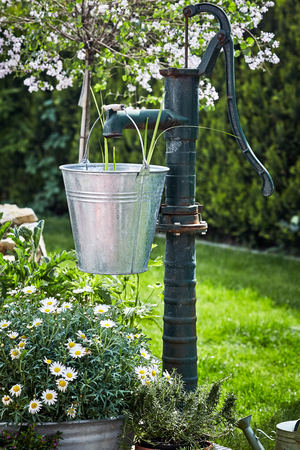 Trendy garden landscaping with galvanised pail hanging from a vintage water pump amidst spring flowers and a lush green lawn Imagens