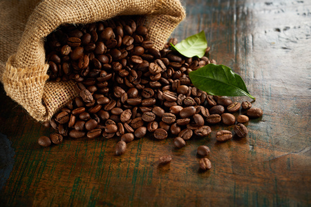 Fresh medium roasted coffee beans with green leaves spilling from a hessian sack onto an old vintage wood table in close up view