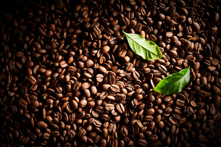 Dark roasted coffee bean background texture with heavy vignette and two fresh green leaves in the corner in a full frame view