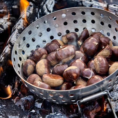 Fresh whole sweet chestnuts in their shells in a metal roaster over hot coals on a barbecue fire in a close up view