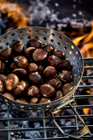 Fresh sweet chestnuts in the shells roasting in a metal roaster on a grill over a hot barbecue fire