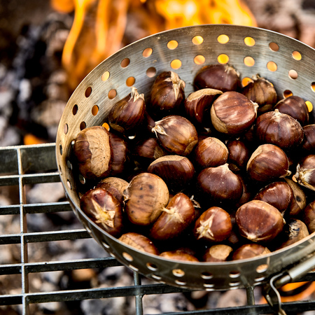 Close up on fresh fall chestnuts in their skins roasting on a fire in a metal roaster for a tasty healthy seasonal snack
