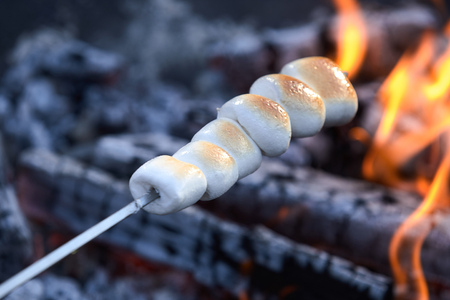 Browned soft melting toasted marshmallows on a skewer over the hot coals of a barbecue fire 免版税图像