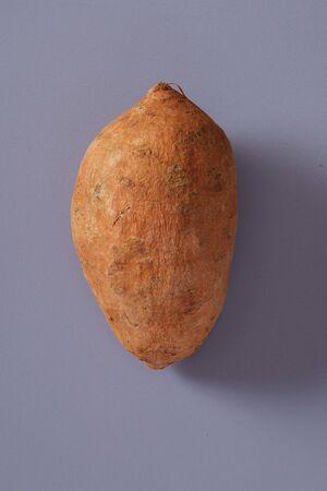 Single healthy fresh raw whole sweet potato or yam lying on a grey background