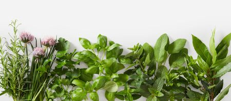 Sprigs of different healthy fresh culinary herbs with edible flowers over white
