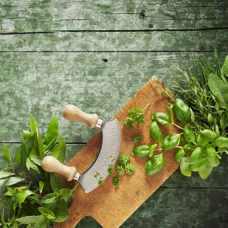 Mezzaluna knife on a chopping board surrounded with an assortment of fresh culinary herbs on old rustic vintage wooden background