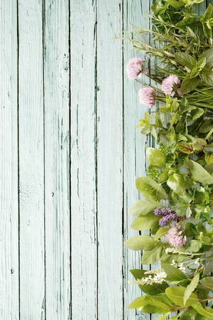 Vertical side border of assorted fresh culinary herbs and edible flowers on a rustic painted wood background with copy space