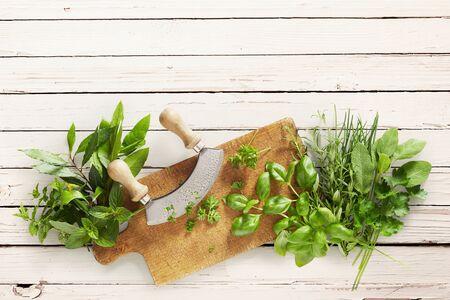 Nóż Mezzaluna na desce do krojenia z różnymi zdrowymi, świeżymi, zielonymi, zielonymi ziołami kulinarnymi na drewnianym tle z miejscem na kopię