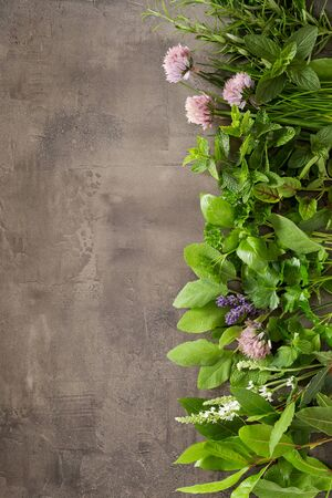 Vertical border of different fresh aromatic herbs for cooking with edible flowers on a textured grey slate background with copy space