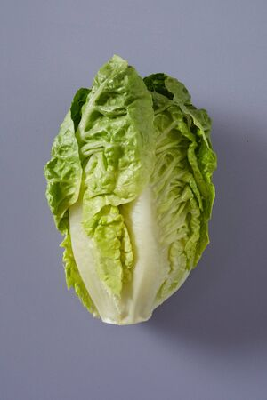 Whole fresh raw head of Chinese cabbage or Napa Cabbage with crinkly green leaves over a grey background in a healthy diet and produce concept