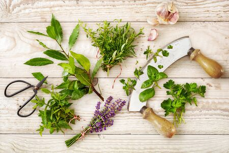 Fresh herbs and edible flowers with a mezzaluna knife and clove garlic on white washed wood with woodgrain pattern viewed from overhead