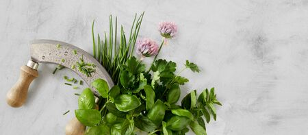 Panorama banner of assorted fresh culinary herbs with a mezzaluna knife and edible flowers with chives, basil, mint and coriander over mottled grey with copy space