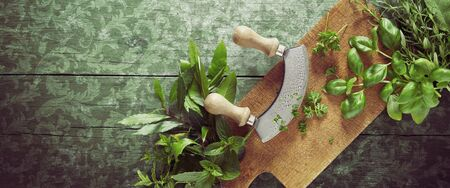 Rustic or vintage panorama on mottled green wood with sprigs of assorted fresh herbs on a wooden board with mezzaluna knife for chopping with copy space