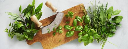 Mezzaluna knife on a chopping board surrounded by a large assortment of fresh herbs for cooking and garnishes in a panorama banner on white