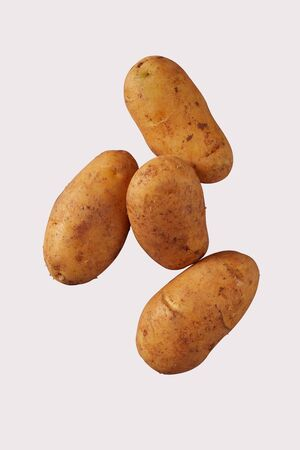 Four healthy fresh farm potatoes, spuds, tater or tatties isolated on white viewed from close up with copy space