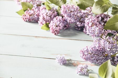 Faded vintage style spring background with lilac flowers in dainty sprays arranged to the corner over white wood with copy space