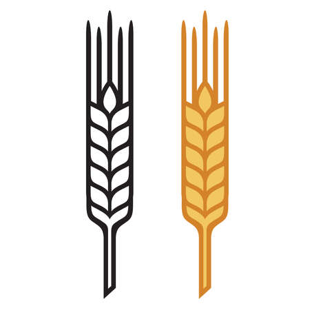 Ears of Wheat, Barley or Rye, visual graphic icons. 스톡 콘텐츠