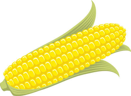 Corn on the Cob Sweetcorn with leaves, flat graphic illustration.