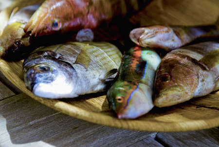 grilled fish: Selection of fish to be grilled LANG_EVOIMAGES