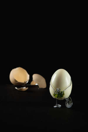 Discreet egg Stock Photo - 15987777