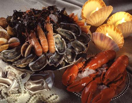 Assorted shellfish Stock Photo - 17229100