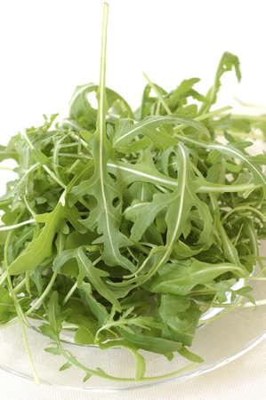 rocket lettuce: Rocket lettuce LANG_EVOIMAGES